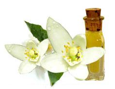 Αιθέριο Έλαιο Νερολί (Citrus Aurantium)