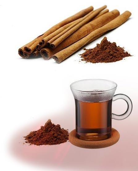 Κανέλα (Cinnamomum Zeulanicum)